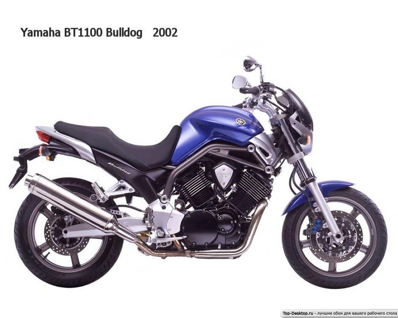 Мануалы и документация для Yamaha BT1100 Bulldog