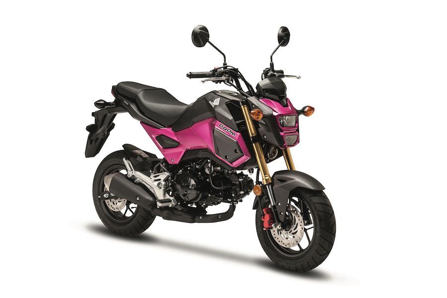 Обзор мотоцикла Honda MSX125