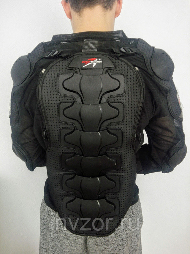 Защитная экипировка моточерепаха
