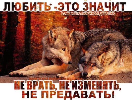 Говорящий правду достигает трех вещей: доверия, любви и уважения...
